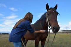 Het meisje wast een paard Stock Afbeeldingen