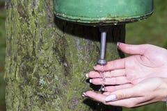 Het meisje wast handen Royalty-vrije Stock Foto's