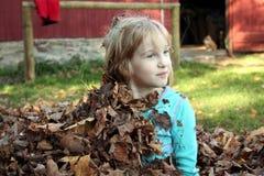 Het meisje zit omhoog van het verbergen in bladeren Stock Foto