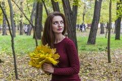 Het meisje zit op de boomstam van een gevallen boom Een vrouw houdt de bladeren in de herfst stock foto