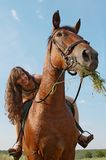 Het meisje zit op horseback Royalty-vrije Stock Foto's