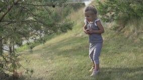 Het meisje zoekt kegels onder de boom stock videobeelden