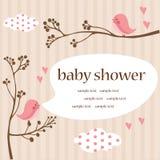 Het meisjesdouche van de baby Stock Foto's