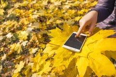 Het meisjesgebruik telefoneert in het de herfstpark Stock Fotografie
