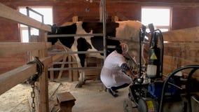 Het melken van een koe bij kleine melkveehouderij stock video