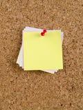 Het memorandumnota's en speld van de kleur Stock Foto