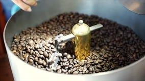 Het mengen zich van geroosterde koffie Gedeeltelijke verwijdering van slechte korrels De geroosterde koffiebonen kregen op mixer  stock video