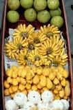 Het mengsel van vruchten royalty-vrije stock afbeelding