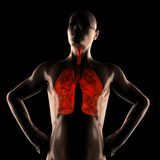 Het menselijke aftasten van de borstradiografie Stock Foto's