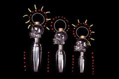 Het menselijke de flessen en de schudbekers schilderen van de kristal hoofdschedel Royalty-vrije Stock Foto's