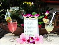 Het menu van dranken Royalty-vrije Stock Afbeelding