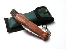 Het mes van de paddestoel met groene dekking Stock Foto