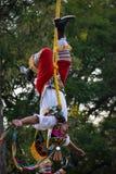 Het Mexicaanse poolvlieger dansen Royalty-vrije Stock Afbeeldingen
