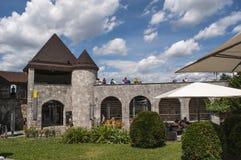 Het middeleeuwse Kasteel van Ljubljana, Ljubljana, Ljubljanski grad, kasteel, fort, vesting, Slovenië, Europa, panorama Stock Foto