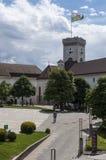 Het middeleeuwse Kasteel van Ljubljana, Ljubljana, Ljubljanski grad, kasteel, fort, vesting, Slovenië, Europa, panorama Stock Fotografie