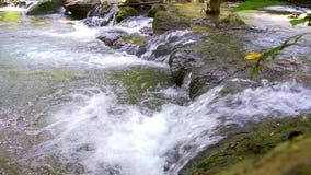 In het midden van streamlet bij het Nationale Park van Khao Laem stock video