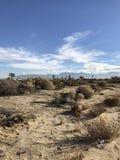 In het midden van woestijn Stock Afbeeldingen