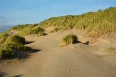 In het midden van Zandduinen met duinengras op de Noordzee stock fotografie