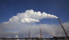 Het milieu Stock Fotografie