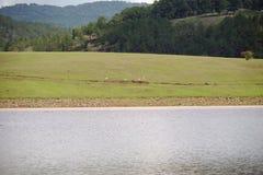 Het milieu en het ecosysteem, groene weide naast het meer met blauwe hemel en wolkendeel 4 royalty-vrije stock afbeeldingen