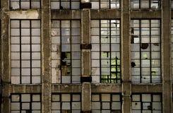 Het milieu van de fabriek Stock Afbeelding