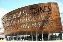 Het Millenniumcentrum van Wales, Cardiff royalty-vrije stock foto's