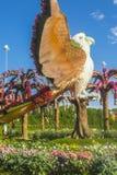 Het Mirakeltuin van Doubai Royalty-vrije Stock Foto's