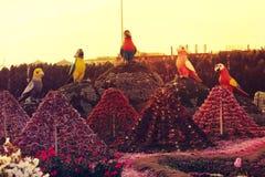 Het Mirakeltuin van Doubai stock afbeeldingen
