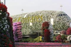 Het Mirakeltuin van Doubai met meer dan 45 miljoen bloemen in een zonnige dag, Verenigde Arabische Emiraten stock afbeeldingen