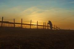 Het mistige landschap van de ochtendzonsopgang Stock Foto's