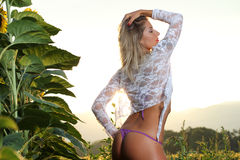 Het model stellen in de zonsondergang Stock Afbeeldingen