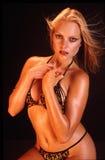 Het model van de bikini stock afbeelding