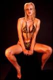 Het model van de bikini stock afbeeldingen