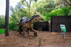 Het model van de Edmontosaurusvertoning in de Dierentuin van Perth Royalty-vrije Stock Afbeeldingen