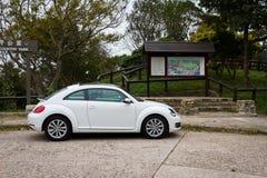 Het Model van Volkswagen Beetle 2013 Royalty-vrije Stock Afbeeldingen