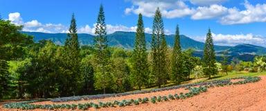 Het modelleren Bergachtergrond royalty-vrije stock afbeeldingen