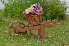 Het modelleren, Bloemen in de Planter van de Wielkruiwagen Stock Foto's
