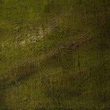 Het moderne abstracte schilderen voor binnenland door olie op een ruw canvas, royalty-vrije stock afbeelding