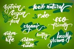 Het moderne borstel van letters voorzien Met de hand geschreven woorden over biologische producten Stock Afbeeldingen