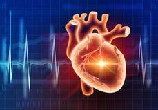 Het moderne concept van de geneeskundecardiologie Stock Foto's