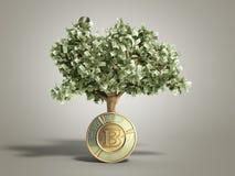 Het moderne concept winst van het investeren in 3d bitcoin geeft terug Royalty-vrije Stock Foto