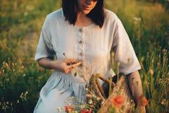 Het modieuze meisje in zich linnenkleding het verzamelen bloeit in rustieke stromand, zittend in papaverweide in zonsondergang De royalty-vrije stock afbeeldingen