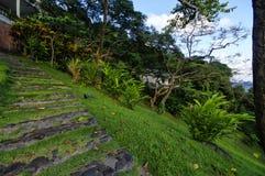 Het modieuze plattelandshuisje op westkust van Dominica eiland op 4 Januari, 2017 Kasteel Bruce i Royalty-vrije Stock Foto