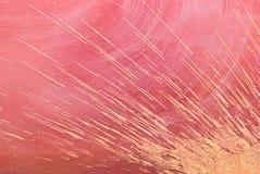 Het moerasgrond van de spat. Royalty-vrije Stock Afbeeldingen