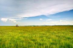 Het moerasland op het rust Paviljoen Royalty-vrije Stock Afbeeldingen
