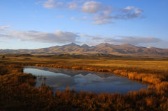 Het moerasland van de herfst royalty-vrije stock fotografie
