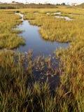 Het Moerasland van het zoutwater royalty-vrije stock afbeeldingen