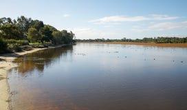 Het Moerasland van westelijk Australië Royalty-vrije Stock Afbeeldingen