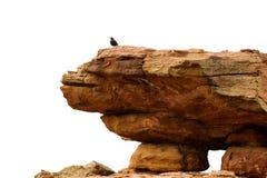 Het Monster van de rots Royalty-vrije Stock Afbeeldingen