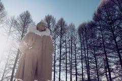 Het monument van Lenin in park onder sneeuw stock foto's